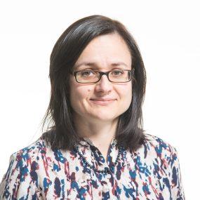 Iryna Roshko, Consultant
